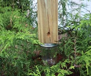 Carpenter Bee Trap | Tutorial