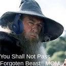 Gandalf The Great Gamer3971