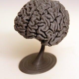 brain_new2.jpg