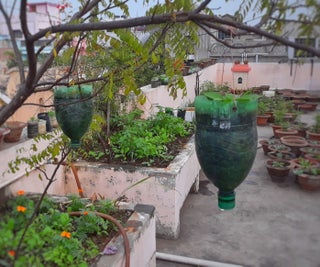 Recycled Bottle Pots