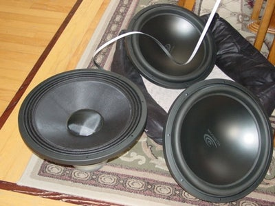 Choosing a Subwoofer and Type of Box