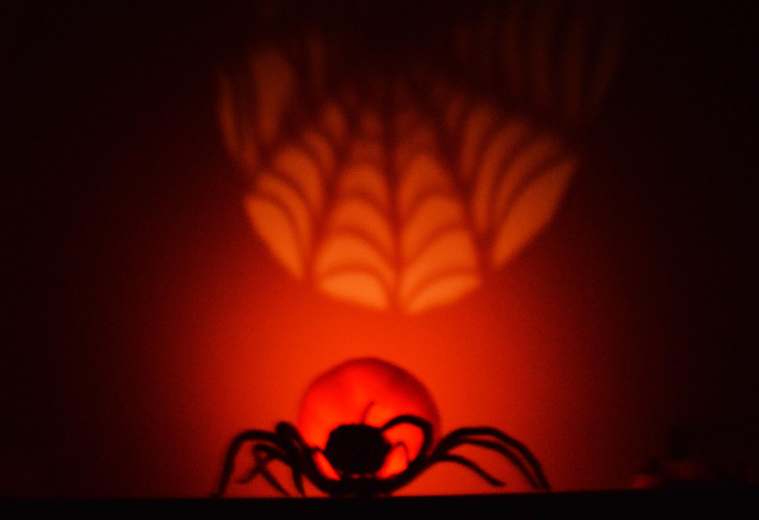 Set a Lit Candle Inside the Jack O'Lantern