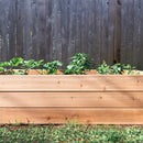 如何建造一个凸起的花园床