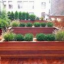 NYC Landscape Design Guide