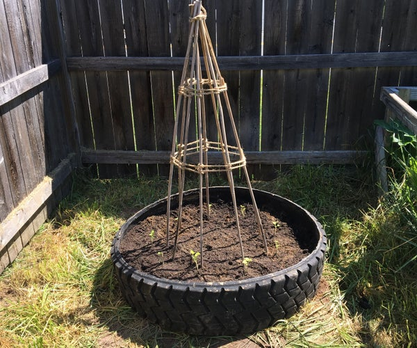 DIY Peas/Bean Planter (using an Old Tire!)