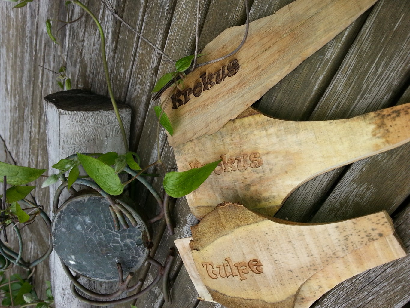 Big Plant Markers