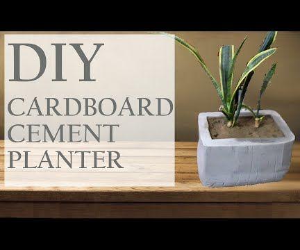 DIY Cardboard Night Oxygen Planter
