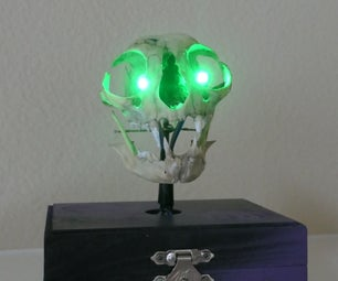 Skull With Gradient Eyes.
