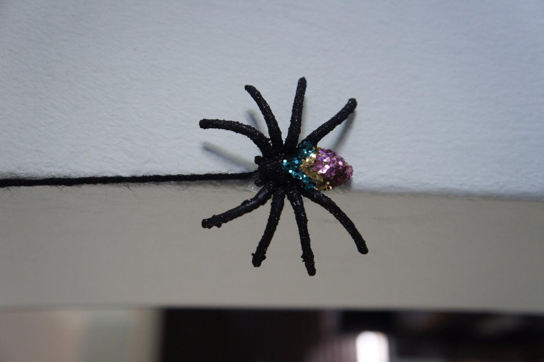 Spinning Spider Webs