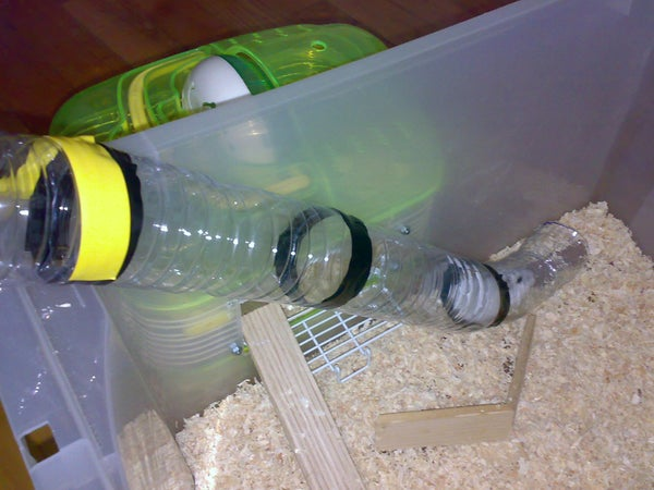 Your Hamster's New Home