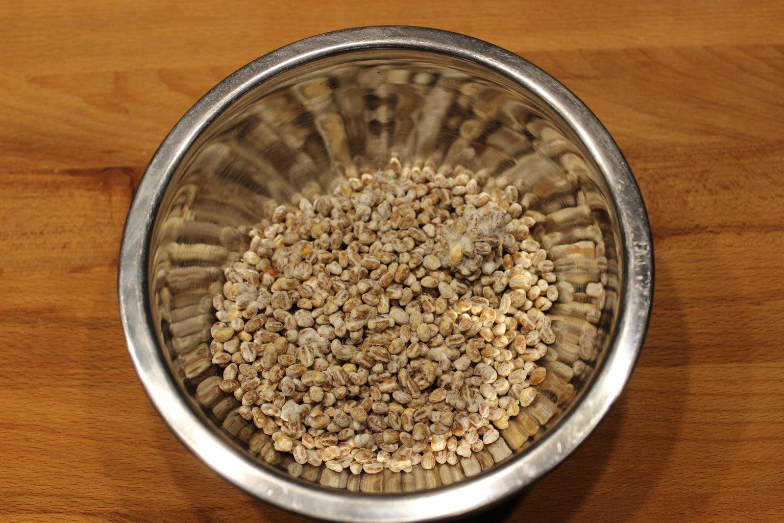 Jar Filling (and Sterilization)