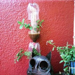 DIY Vertical Window Garden