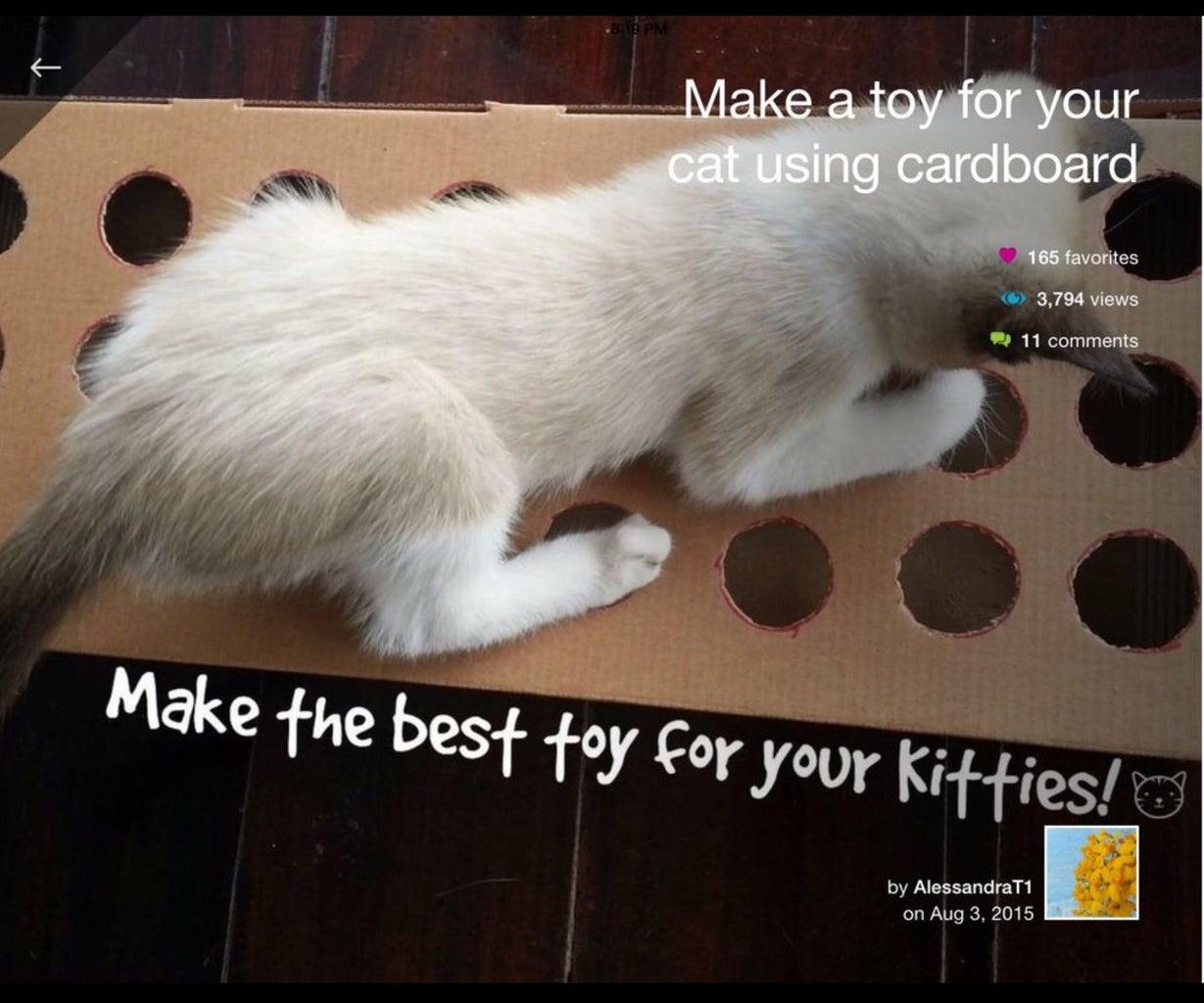 Kitten Toy Reborn!