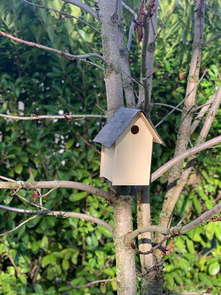 Put the Birdhouse Somewhere