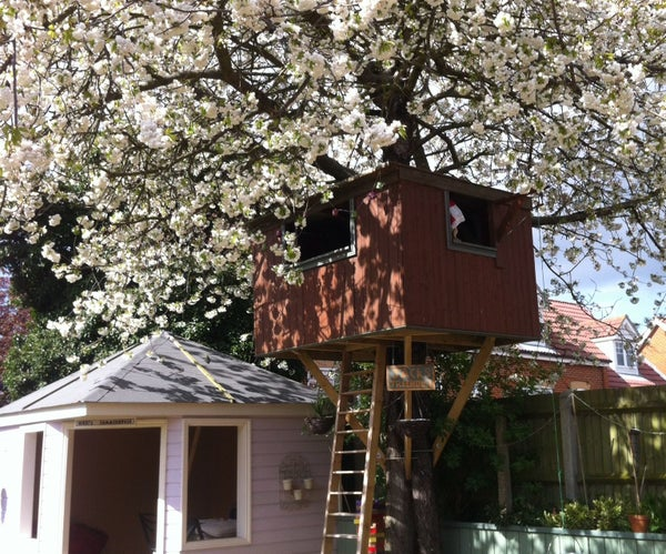 Jacks Treehouse
