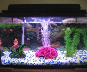 Begginer Fish Tank