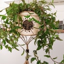 Paper Clay Boho Hanging Pot