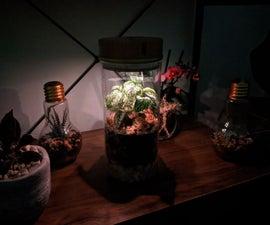 IoT-Terrarium
