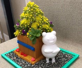 Teddy Bear Planter