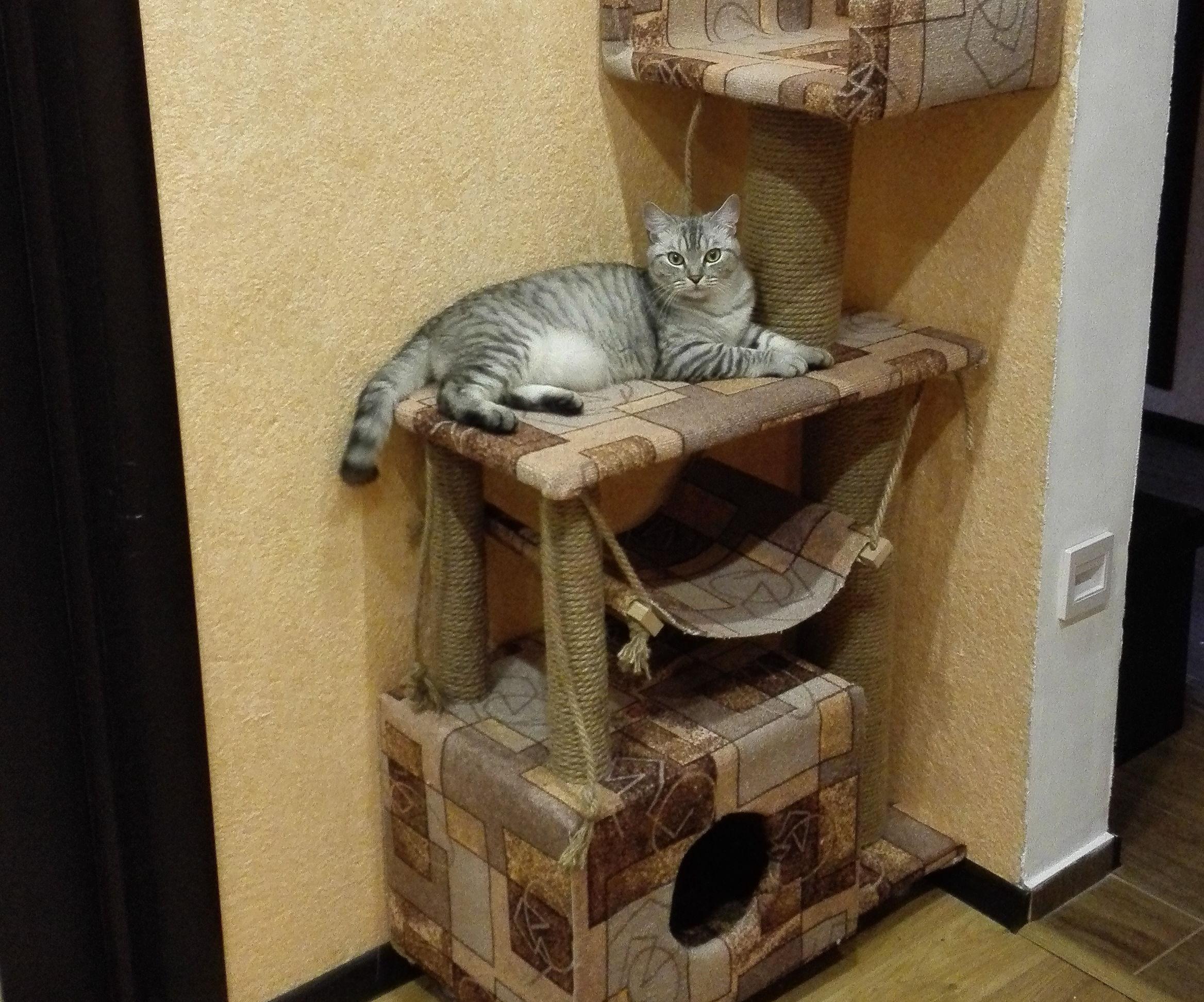 Cathouse