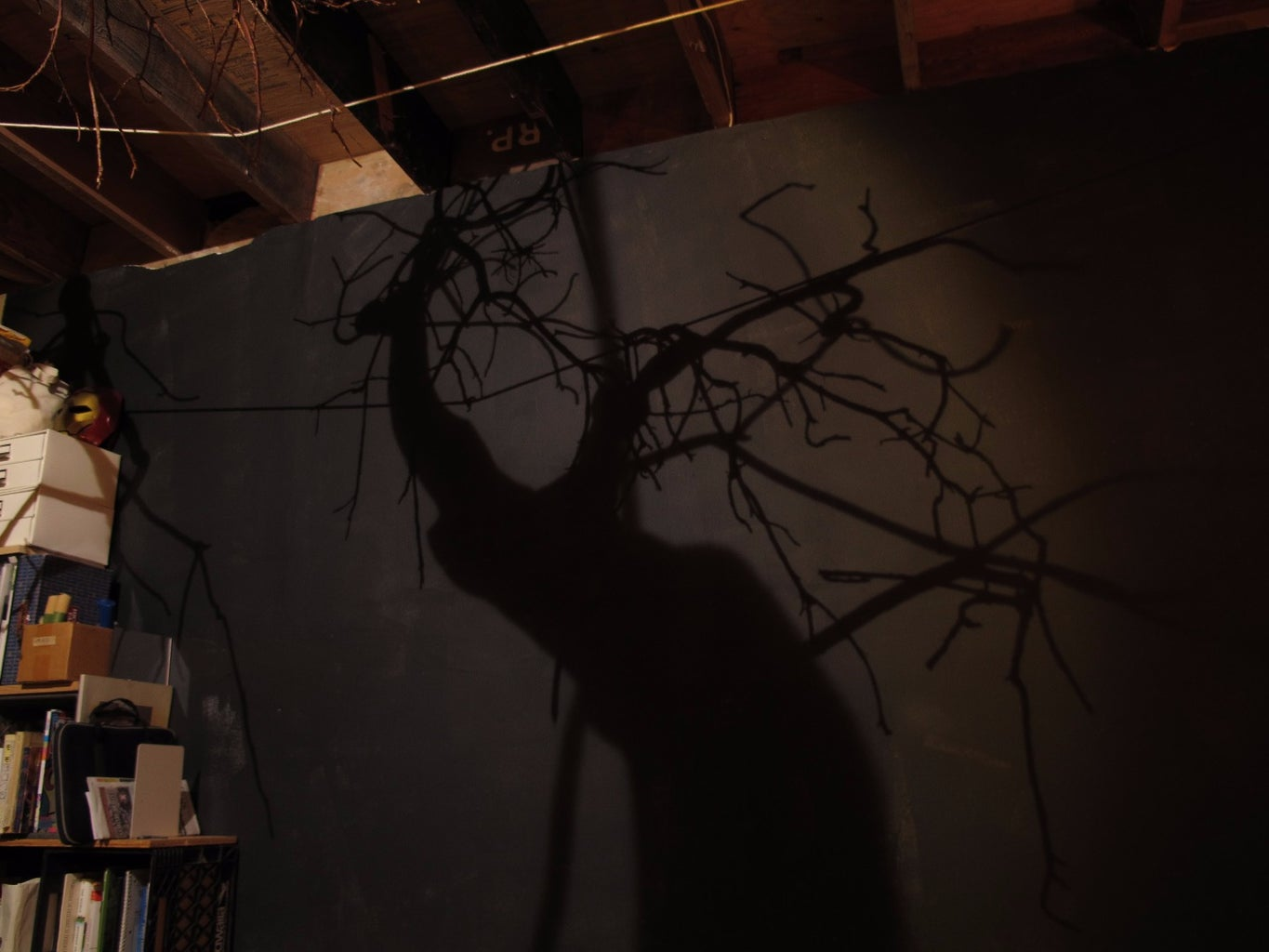 Tree Shadow Light:Night Forest in Your Bedroom