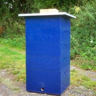 Budget National Beehive (Wales)