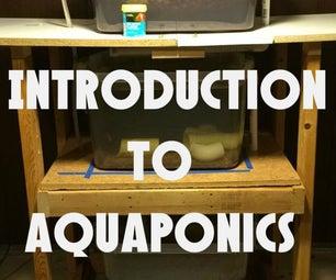 Introduction to Aquaponics