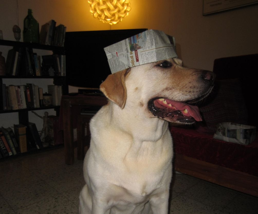 Printer's Hat : Much More Than Just a Hat