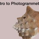 Photogrammetry in 18 Step! (Agisoft Metashape)