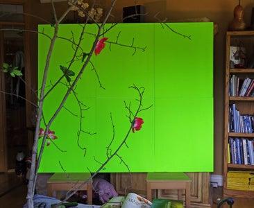 The Green Screen