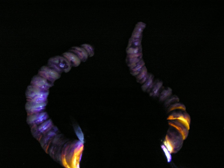 Easy Hollow Horns