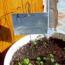 Aluminum Planting Tags