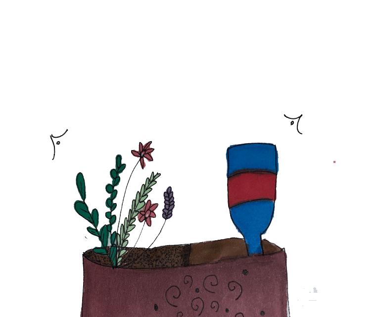 Self Watering Plant System