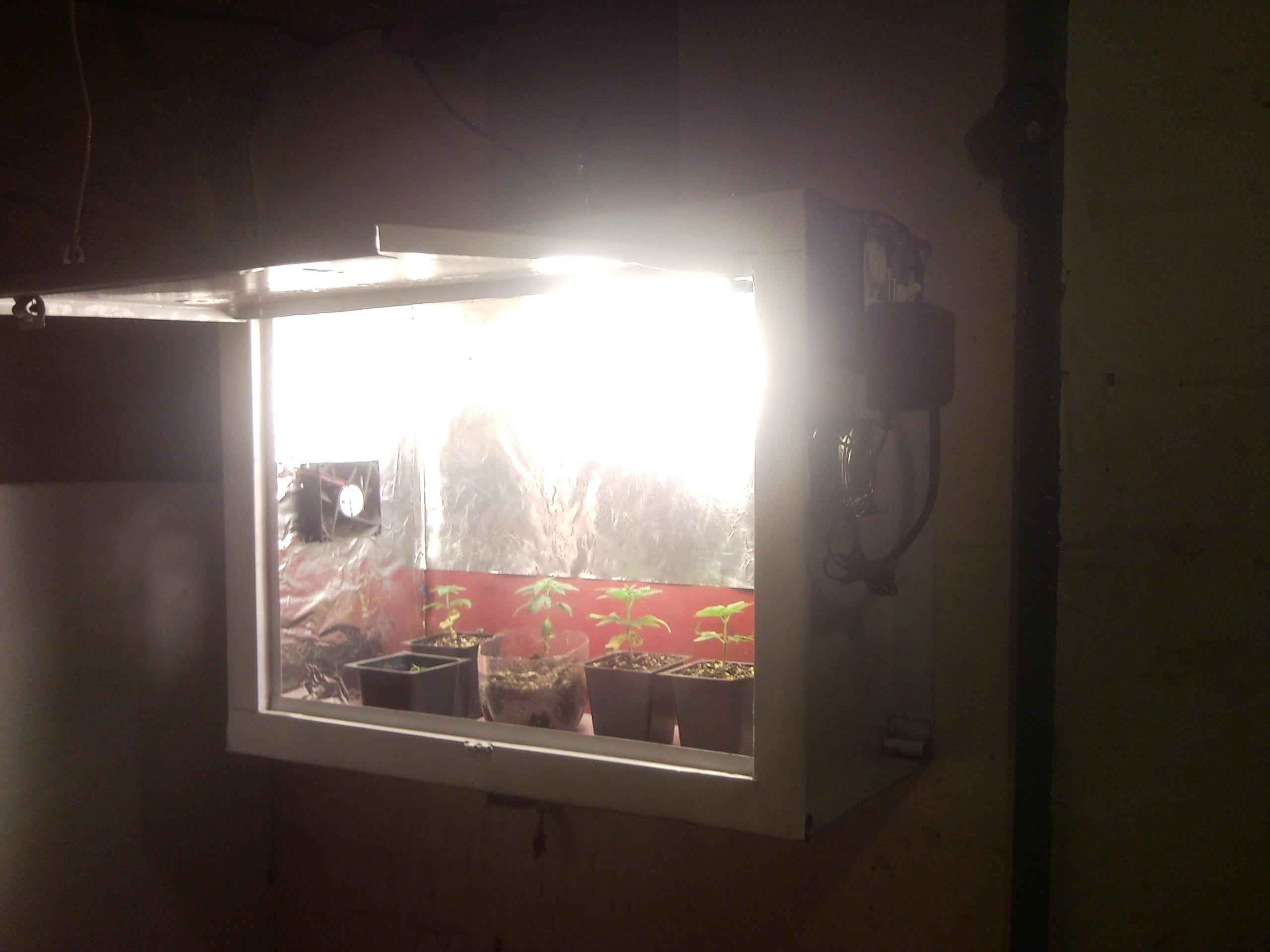 DIY- Indoor Seedling Grow Box