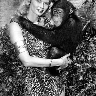 Sheena-you don't monkey around.png