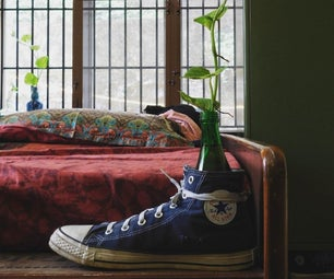 Indoor Planting Setup Using Your Old Shoe