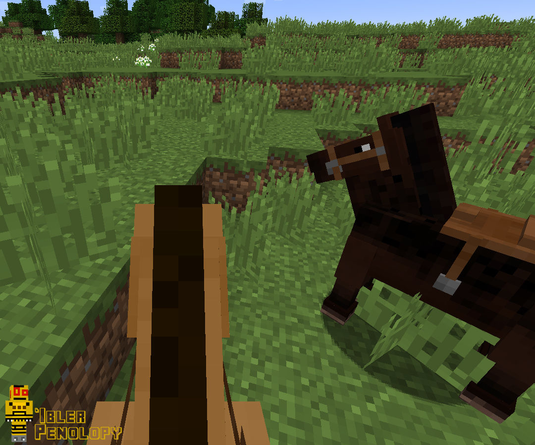How To Ride A Horse In Minecraft 5 Steps With Pictures Instructables
