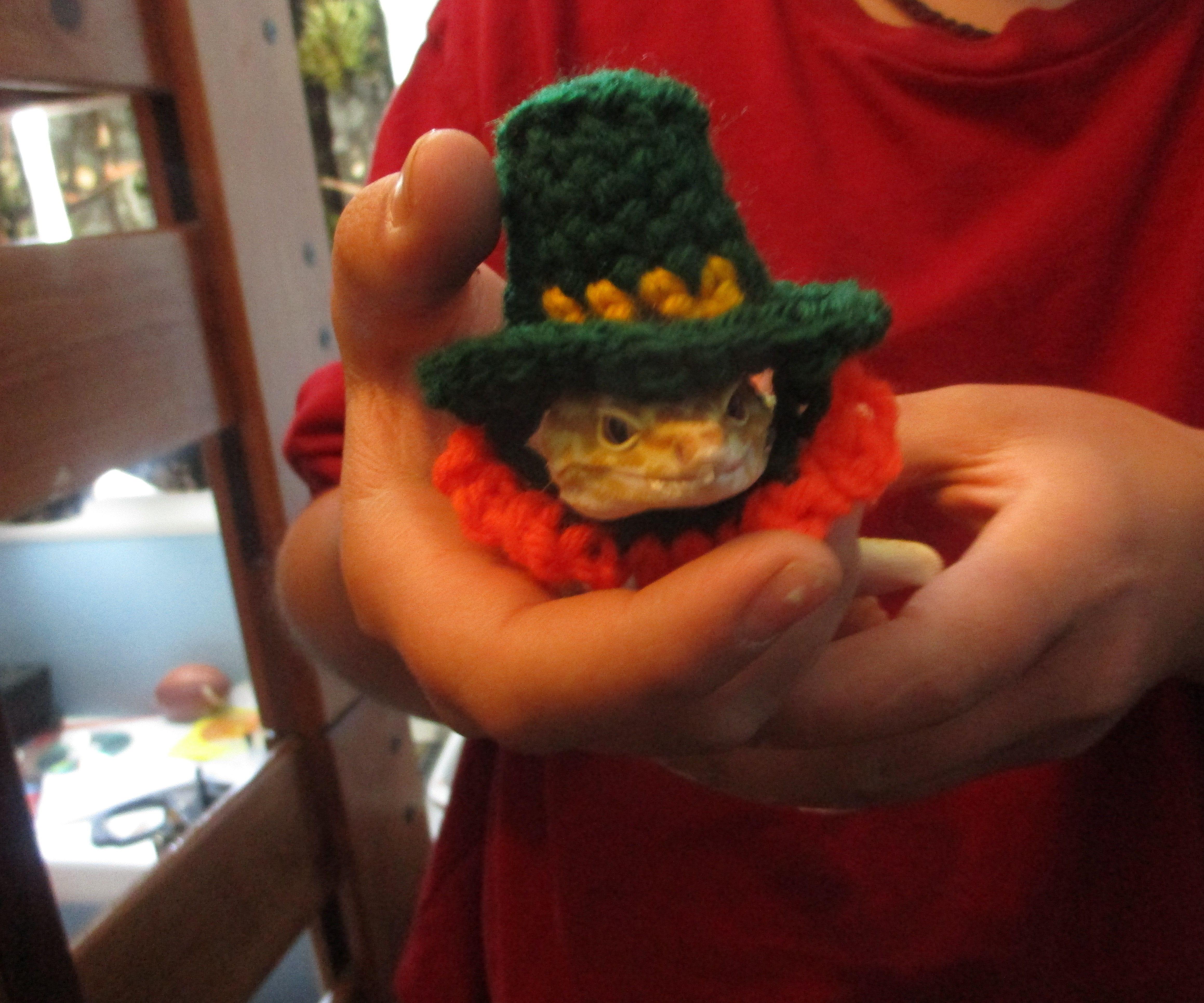 Tiny Crochet Lepercon Hat