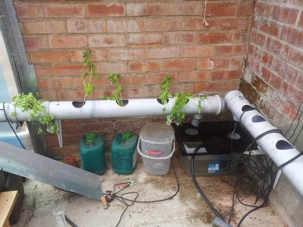 How to Setup and Run a Hydroponics System