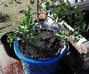 DIY Air Pruning Pot (Large Pot)