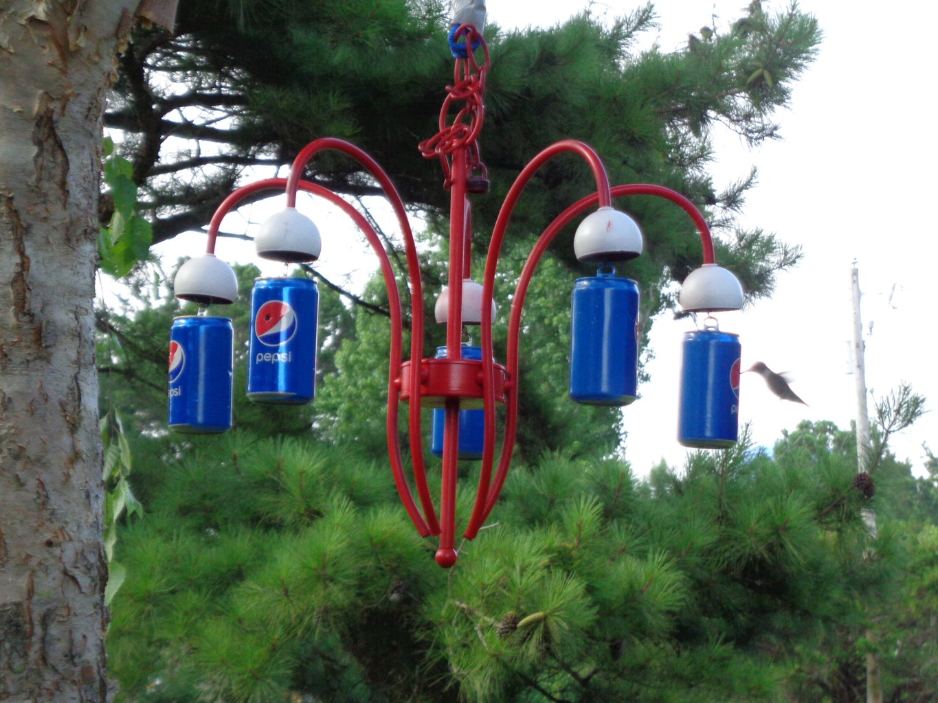 Step 6:  Hang the Feeder So You Can Watch the Birds