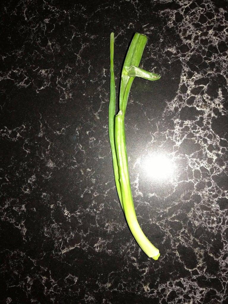 (Optional) Green Onion