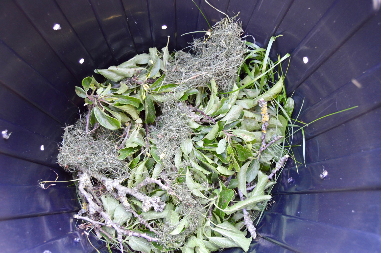 Add the Compost