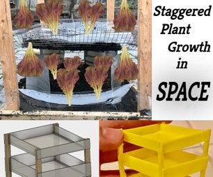 空间交错的植物生长