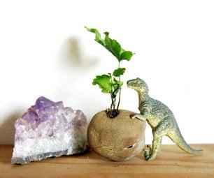 Mini Container Gardening