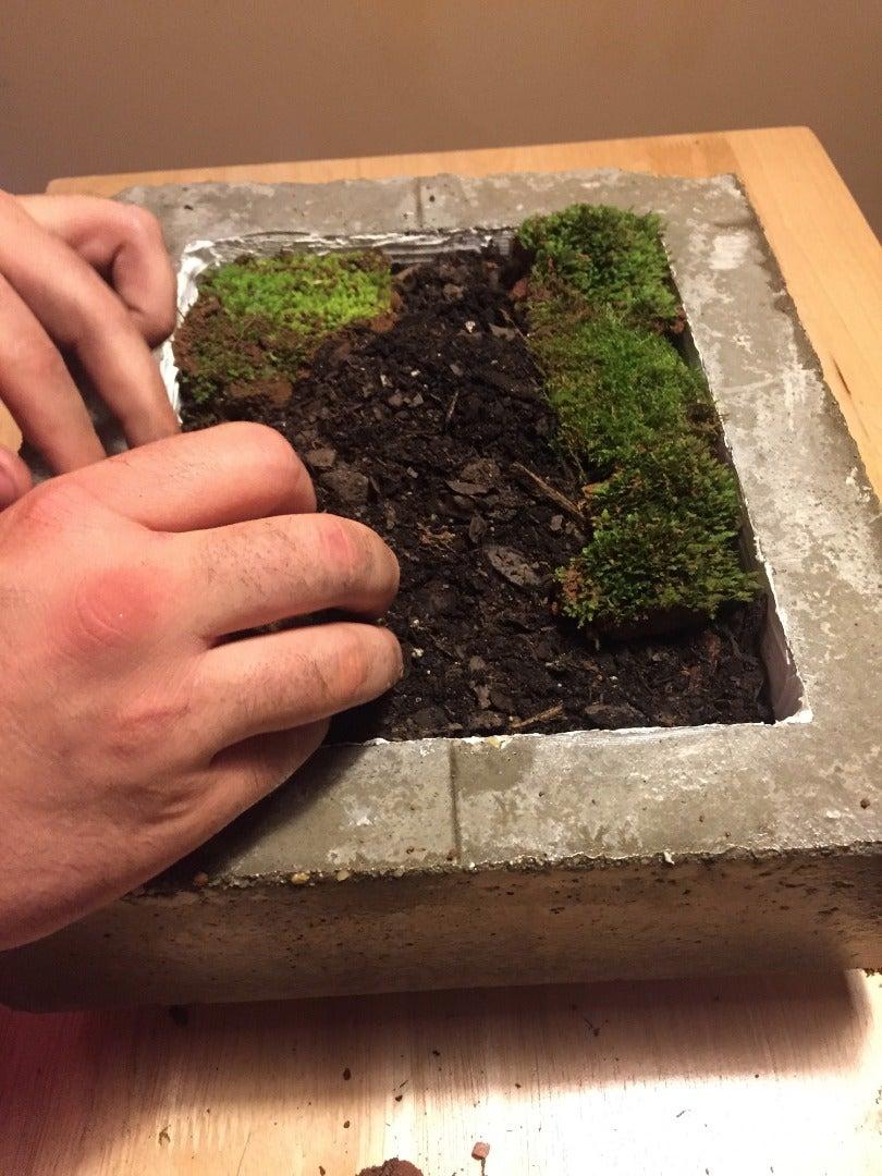 Deciding What to Plant