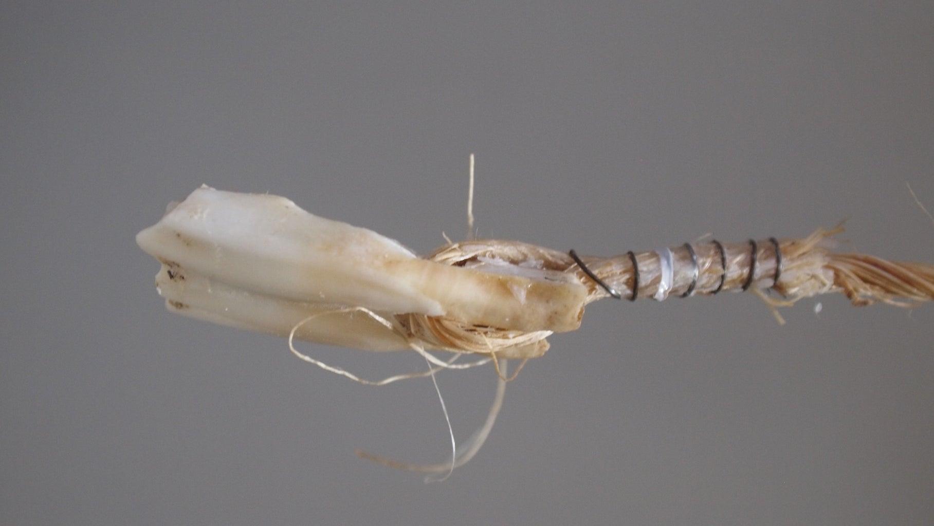Bone Windshine