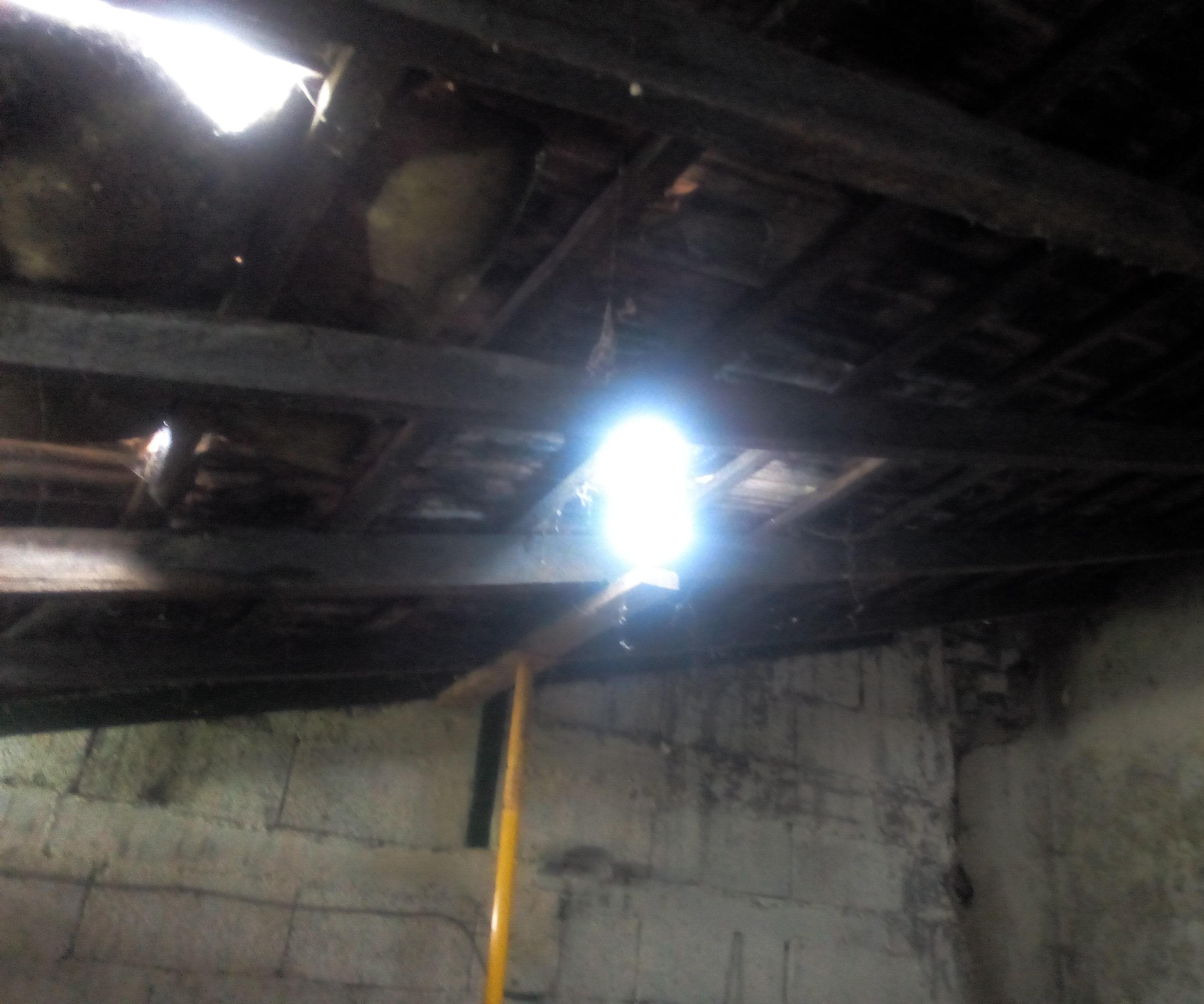Roof Bulb