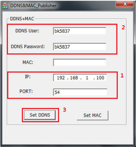 Reset the DDNS and MAC