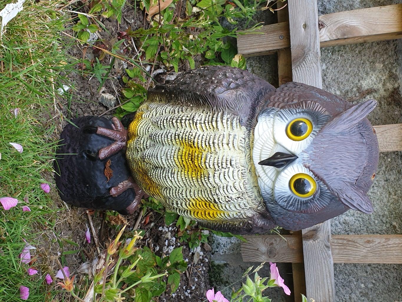 Plastic Owl